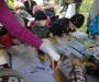 pirita-sygisjooks-2012-sep-24-2011-10-052