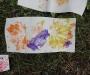 pirita-sygisjooks-2012-sep-24-2011-10-21-am-4320x3240